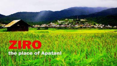 Photo of ज़ीरो- प्राकृतिक सौंदर्य से भरपूर आपातानी जनजाति समुदाय का घर