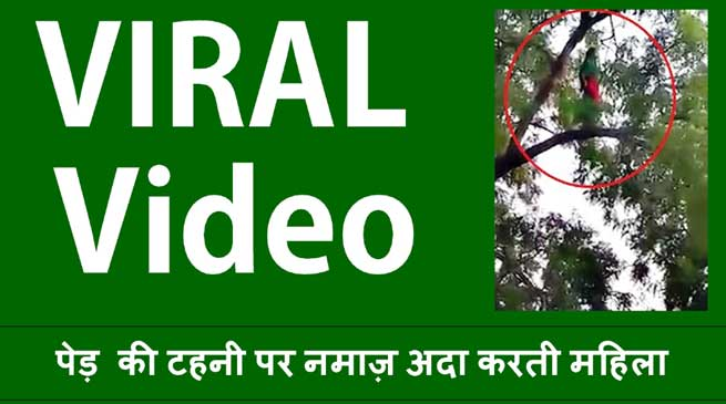 Viral Video- पेड़ की टहनी पर नमाज़ अदा करती महिला, फिर हो जाती है गायब