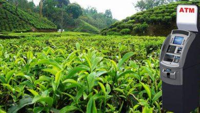 Photo of चाय बागानों में लगाए जाएंगे 1000 नए एटीएम