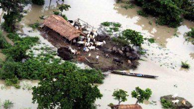 Photo of केंद्रीय दल का पांच दिवसीय असम दौरा, बाढ़ से हुए नुकसानों का लेगा जायजा