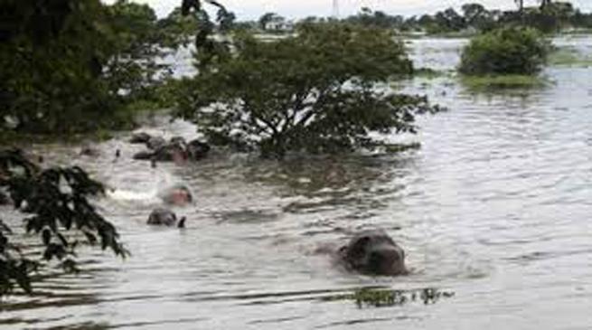 असम में बाढ़ स्थिति और बिगड़ी, कई जिले चपेट में