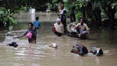 Photo of असम – बाढ़ में 15 जिले प्रभावित, अनिश्चितकाल के लिए बंद एनएच-37