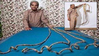 Photo of Watch Video – श्रीधर चिल्लाल जिस ने वर्ल्ड रिकॉर्ड बनाने के लिए 66 वर्ष तक नहीं काटे अपने नाखून